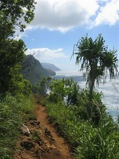 Kalalau Trail. This 11-mile hike is one of the most popular activities in Kauai.