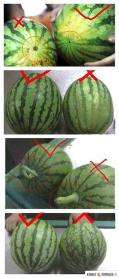 Watermelon: How To Pick The BEST One - On the opposite of the stem (where the flower fell off) is a small round black hole . the one with the SMALLEST hole is the SWEETEST! good to know Do It Yourself Food, Mini Sandwiches, Cooking Recipes, Healthy Recipes, Food Facts, Baking Tips, Fruits And Veggies, Vegetables, Kitchen Hacks