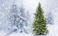 Karácsony, fenyőfa, havazás