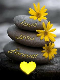 Color splash of yellow ~ love you forever. Color Splash, Color Pop, Colour Yellow, Tu Me Manques, Love You Forever, Mellow Yellow, Grey Yellow, Pebble Art, Stone Art