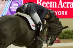 Charlotte Dujardin and Valegro were the stars at the Reem Acra FEI World Cup Dressage Finals in Las Vegas.