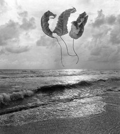 http://www.peterfetterman.com/artists/jerry-uelsmann/featured-works?view=slider#16