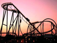 SheiKra Diving Roller Coaster   Busch Gardens Tampa Bay