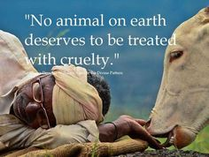 No Animal on earth deserves to be treated with cruelty
