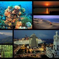 El mejor lugar para estudiar Postgrado en ecosistemas es Veracruz Colpos