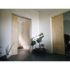 plywood doors.                                                       …