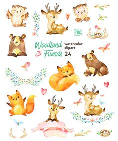 Woodland Friends 3. Watercolor animals clipart от StarJamforKids