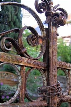 Chained and rusty gate