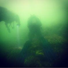 Zo zien we #onderwaterfotografen liever niet: stevig met de knieën rustend op het #rif. Leer trimmen! #PPB #fail #onderwaterfotografie #Kerkweg
