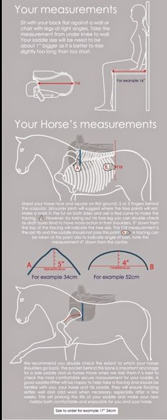 Riding Aside: You, Your Sidesaddle and Your Horse.. Making it all fit! An excellent infographic recommended by this expert blogger.