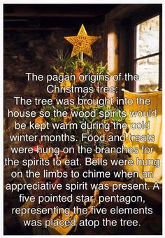 Modern Tips For The Modern Witch : Yule Tree
