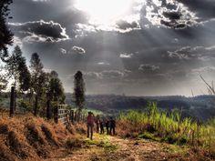 Fotografia tirada na fazenda - Brasil