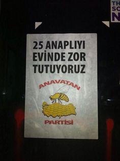 'Gezi' fotoğrafları.