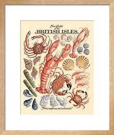 Fresh Shellfish Art Print by Kelly Hall at King & McGaw