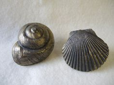 Vintage Seashell Drawer Pulls by CandyTheArtist on Etsy, $14.00