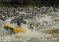 River Rafting and Abseiling - Blyde Canyon Adventure Centre. We offer white-water rafting and tubing on the Olifants River. Other activities are paintball, quad-bike trails, abseiling and kloofing, hot-air balloon flights and microlight flights. Abseiling, Adventure Center, Balloon Flights, Kruger National Park, Adventure Activities, Bike Trails, Solo Travel, Rafting, South Africa