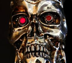 """3 Examples of Terrible Design in Movies""  Terminator by lrargerich, via Flickr"