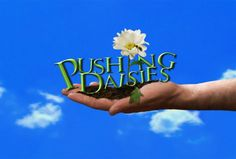 "Shut Your Pie Hole: Televisionary Sits Down with ""Pushing Daisies"" Creator Bryan Fuller Bryan Fuller, Pushing Daisies, Secret Lovers, Tv Times, Geek Out, Music Tv, Happy Thoughts, Favorite Tv Shows, Picture Photo"
