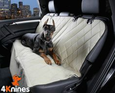 1000 ideas about seat covers for dogs on pinterest dog seat covers dog seat and pet car seat. Black Bedroom Furniture Sets. Home Design Ideas