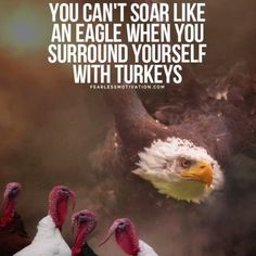 You Can T Soar Like An Eagle When You Surround Yourself With Turkeys Wisdom Turkeys Eagles Quotes Eagle Pictures Fearless Quotes
