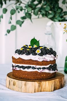 Blackberry Cake with Mascarpone Cream. That's all.