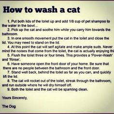 Whoda thought it was so easy to wash a cat?  #lawsaid #justsayin
