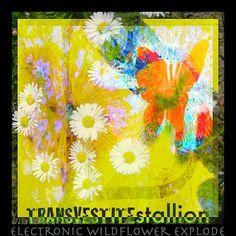 ▶︎ Electronic Wildflower Explode with PowerFlower Noise from your Nozzle by TRANSVESTITEstallion ART | TRANSVESTITEstallion - the experimental dada Electro ART Noise Glitch Band