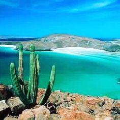 Join us here for our All-Inclusive Sailing Yoga Retreat! May 18th-22nd http:/NamasteCharters.com #islaesperitusanto #lapaz #mexico #seaofcortez #retreats #yogalove #yogaretreat #islandlife #islandvibe #lifeisgood #namastecharters #namaste #sup #suplove #sunshine #vacation #zen #itdoesntgetbetterthanthis #privateisland #sailing #sailboat #onelove #beaches #travel #instatravel #instagram #instahappy by theheidyway