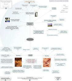 Esquema de la Prehistoria