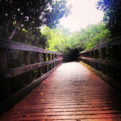 Peace river wildlife preserve in Punta Gorda, Florida