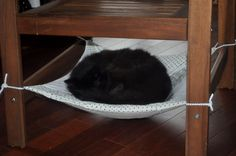 DIY Cat Chair Hammock. Second Hope Circle helps special needs pets in Ontario find homes through promotion, education and funding! www.secondhopecirle.org