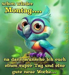 Guten morgen! Wünsche euch allen einen schönen Montag und einen erfolgreichen Start in die neue Woche!  Liebe  grüße Dina
