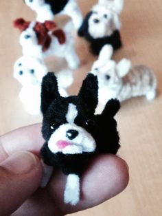 Pipe cleaner Boston Terrier