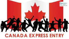 Canada Express Entry system is the best way to immigrate to Canada for skilled professionals as a permanent resident, For more Information about CA express entry contact Global Tree canada Immigration consultants will help you with entire process. Canada Information, Career, India, Touch, How To Plan, Carrera, Goa India, Indie, Indian