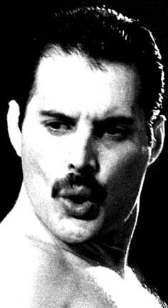 Freddie Mercury, Roger Taylor, Queen Love, Queen Pictures, John Deacon, Music People, Blue Bloods, David Bowie, Cool Bands