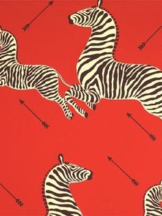 zebra wallpaper. do you recognize it?