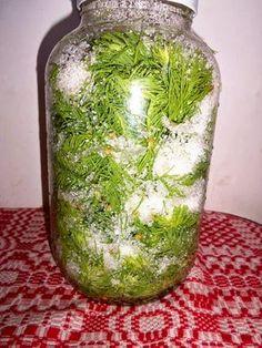 A MAGYAROK TUDÁSA: Gyógyító növényeink 1./b rész Glass Vase, Decor, Healthy, Health, Decoration, Decorating, Deco