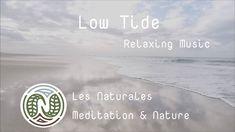Low Tide 🌊 Relaxing Music Sky Ocean Earth Soothing Vastness #relaxation #detente #meditation #nature #bienetre #mieuxdormir #mer #ocean #sea Ocean Music, Relaxing Music, Marie, Meditation, Sky, Beach, Nature, Outdoor, Calming Music
