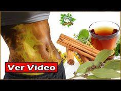 34 Ideas De Tea Te Para Bajar De Peso Beneficios De La Jamaica Flor De Jamaica