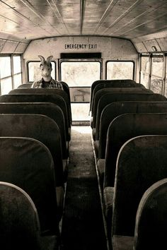 Not even creepy.literally just a guy wearing a bunny mask who rented a bus so they can make people scared but it didn't work lolXD Images Terrifiantes, Creepy Pictures, Creepy Images, Scary Photos, Horror Pictures, Creepy Art, Dark Photography, Macabre Photography, Photography Themes