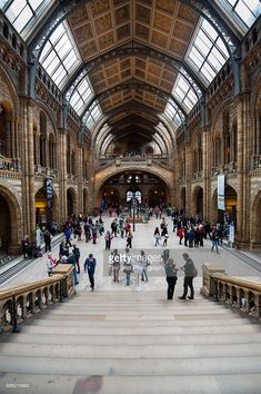 The Hintze Hall, (formerly the Central Hall) at the Natural History Museum, London, UK.