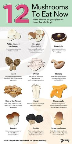 12 Mushrooms and How to Eat Them Edible Wild Mushrooms, Stuffed Mushrooms, Cooking Tips, Cooking Recipes, Diet Recipes, Growing Mushrooms At Home, Mushroom Varieties, Menu Dieta, Mushroom Recipes