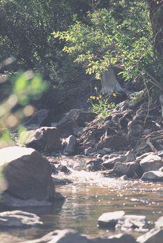 babbling brook (gif)