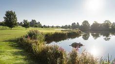 DER ÖSCHBERGHOF | DONAUSCHINGEN | GERMANY | GOLFCLUB | RESORTHOTEL IM SCHWARZWALD | 4*S Golf, Germany, Country Roads, Nature, Air Fresh, Black Forest, Vacation, Naturaleza, Deutsch