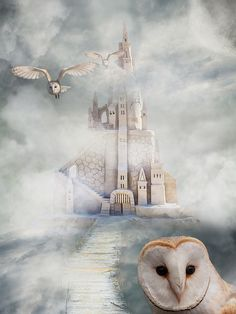 Gratis billede på Pixabay - Slot, Ugle, Eventyr, Mystisk, Fugle