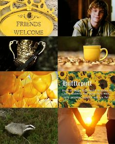 Hogwarts House Aesthetics ~ Hufflepuff  (Harrypottersection.tumblr.com)