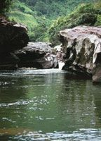 Conservar los ecosistemas del Maciso Colombiano y de los nacimientos de la alta montañagarantiza el caudal de agua de todo el Rio Grande de La Magdalena.