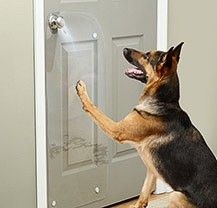 Diy Tip Of The Day Protecting Doors From Dog Scratches Protect Your Doors From Your