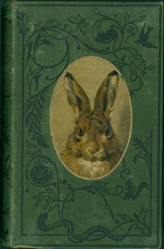 1877? - 300 Aesop's fables -  George Fyler Townsend, George Fyler ( Translator ) and Harrison Weir ( Illustrator )
