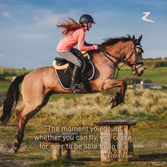 The moment you doubt whether you can fly you cease for ever to be able to do it. from Peter Pan by M. Barrie _____________________ Shop for Karate lovers ( t shirts hoodie hat mug phone case in my bio ) Reposted from Horse Riding Gear, Horse Riding Quotes, Horse Jumping Quotes, Jumping Horses, Inspirational Horse Quotes, Inspirational Speeches, Equestrian Quotes, Equestrian Problems, Riding Lessons